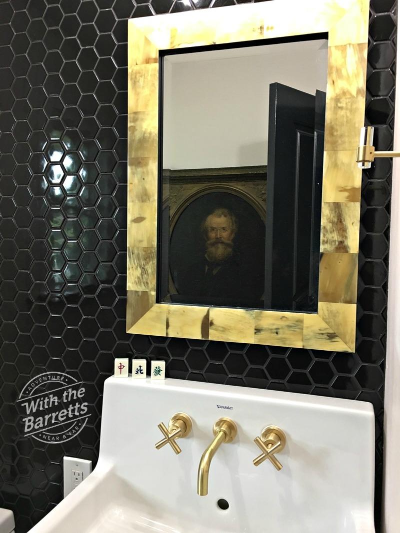 Fergus in mirror