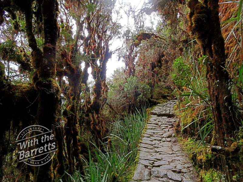 Small Inca Trail