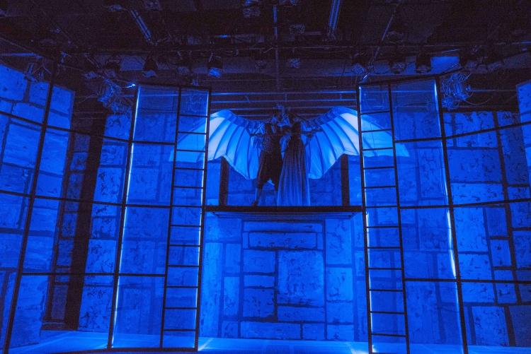 Wing Scene from Leonardo